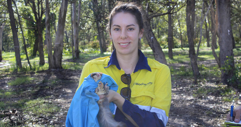 Holding a Possum